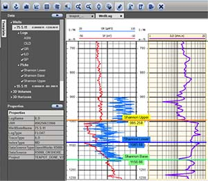 INT collaborates with TIBCO to develop subsurface viewer